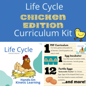 chick hatching educational kit
