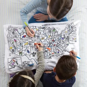 Color your own US map